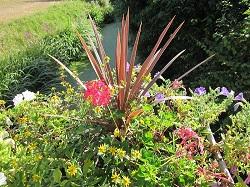 jardiniere-fleurie